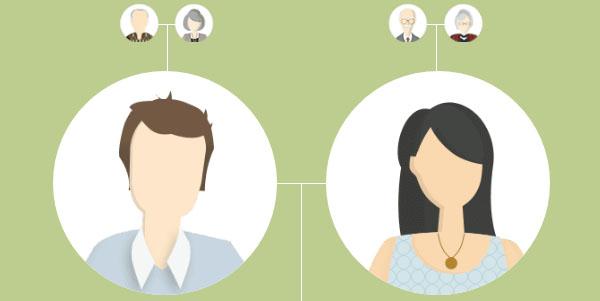 myheritagea vis family tree builder