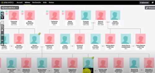 ancestry-arbol-genealogico