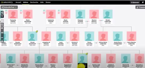 ancestry-dna-slektstreet-programvare